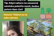 Blog_zahradka-4